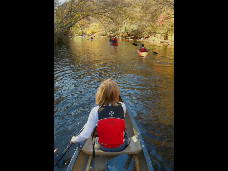 Canoeing_in_Dawson_Forest